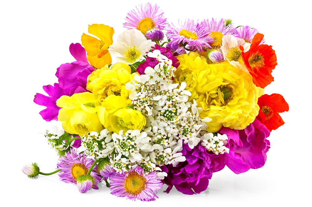 Bouquet of different flowers